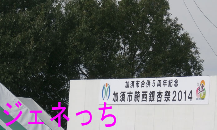 加須市騎西銀杏祭2014
