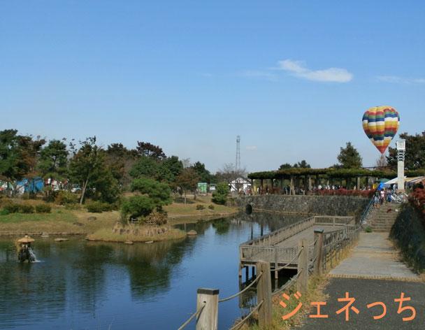 銀杏祭2015池と気球